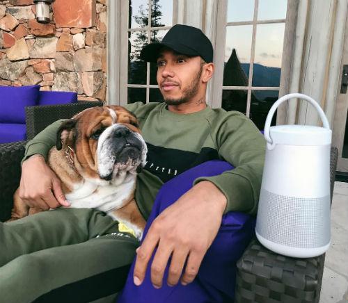 Lewis hamilton con su bulldog