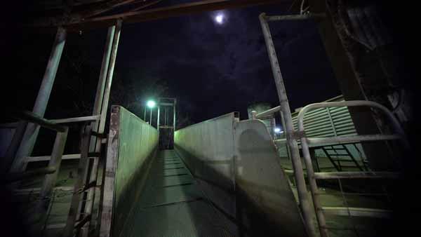 Dominion: granja grabada en cámara oculta