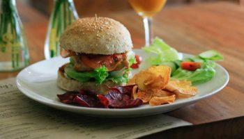 carnivoros-comida-vegana