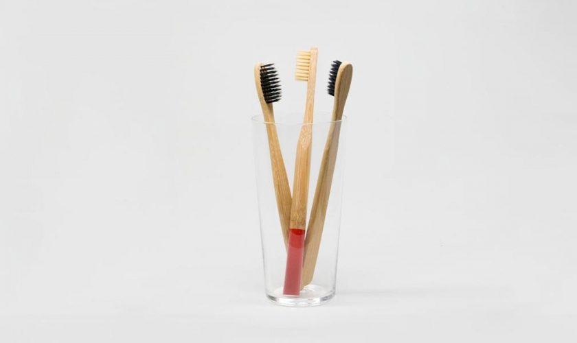 Guia-Cepillos-de-dientes-de-bambu-veganos-ecologicos