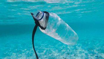 Como-reducir-el-plastico-y-alternativas