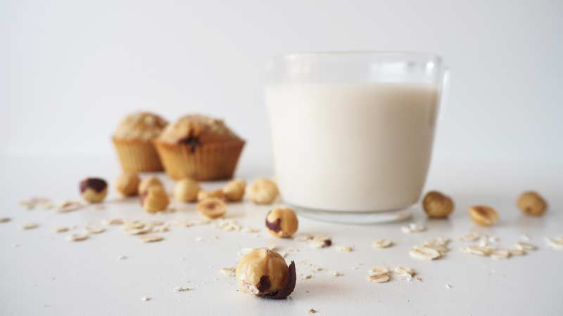 leche de avellanas casera, sin azúcar y sin lactosa